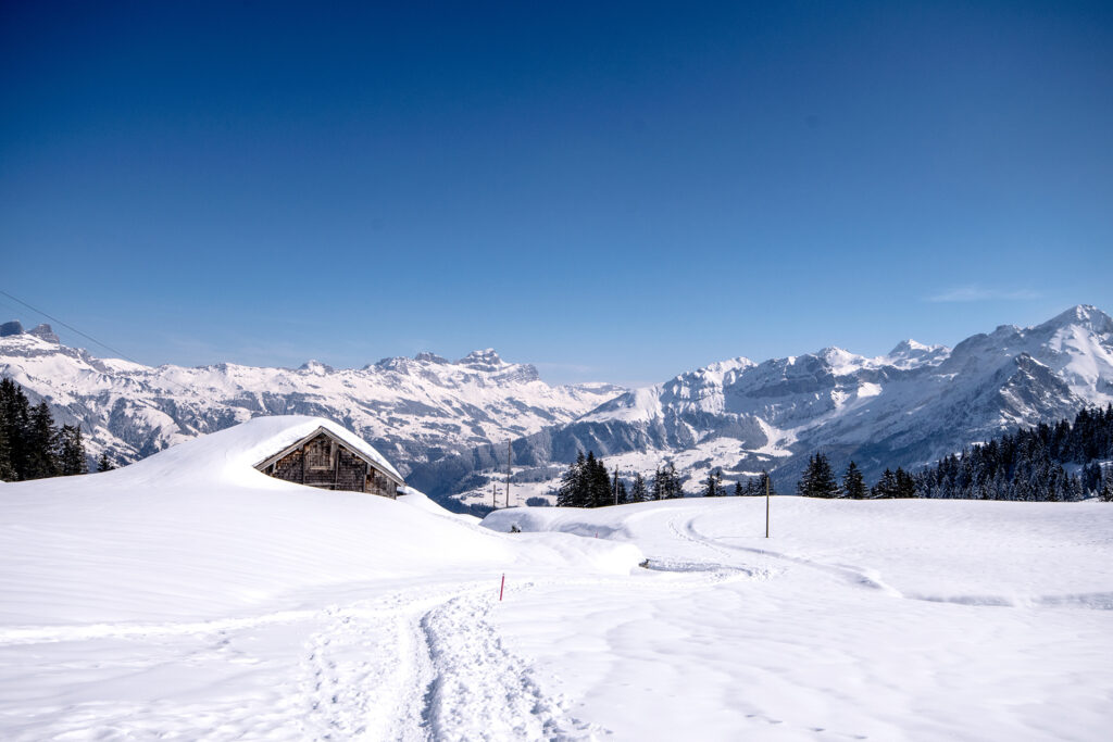 Brüsti Schneeschuh 1